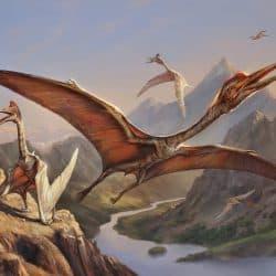1601_quetzalcoatlus_eldar_zakirov