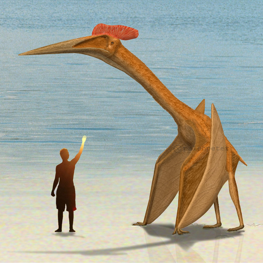 Image result for Quetzalcoatlus