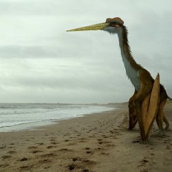 1603_quetzalcoatlus_julian_johnson_mortimer