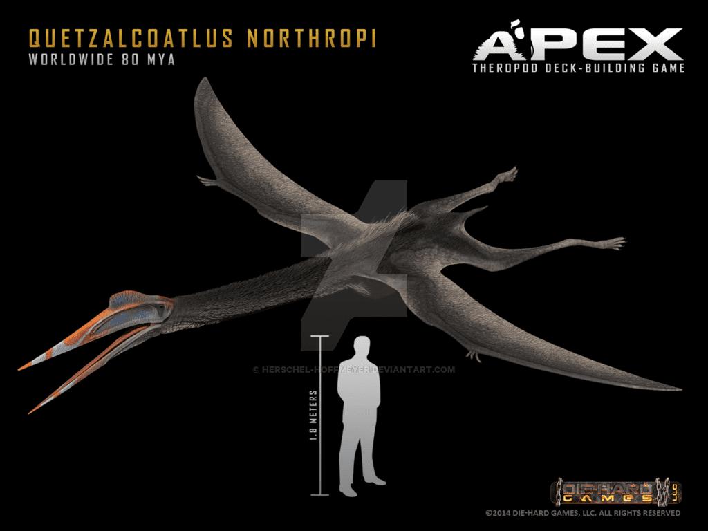 Quetzalcoatlus by Herschel Hoffmeyer