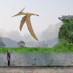 1608_pteranodon_sameerprehistorica