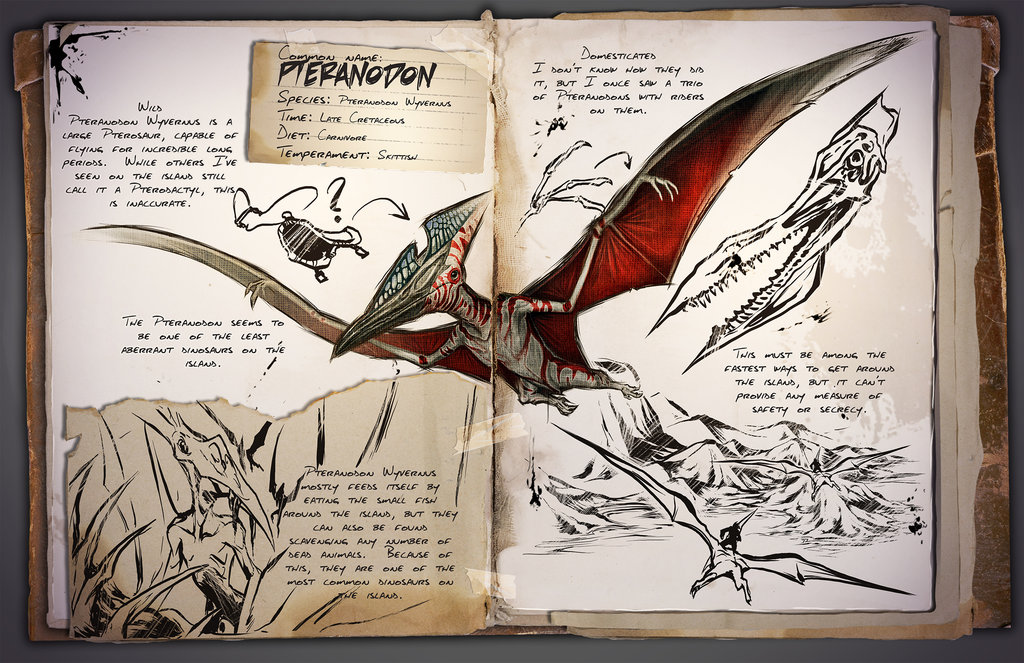Pteranodon by Kevin