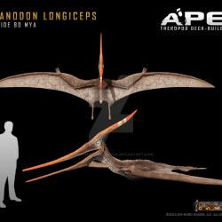 1611_pteranodon_herschel_hoffmeyer