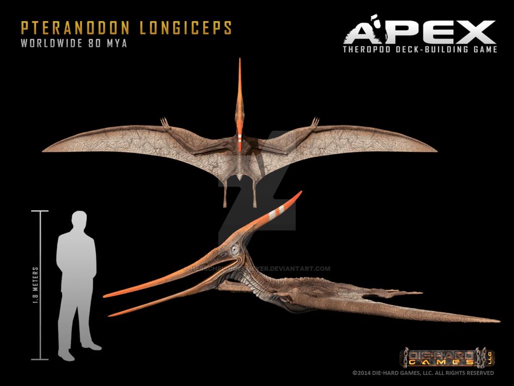 Pteranodon by Herschel Hoffmeyer