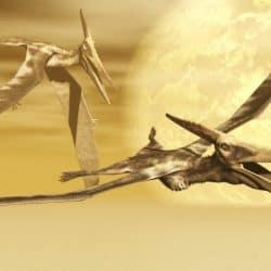 1617_pteranodon_steven_thompson