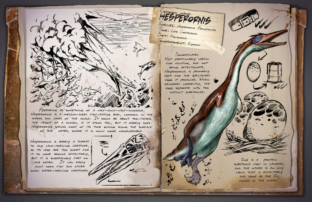 Hesperornis by Kevin