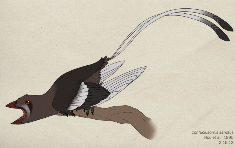 Confuciusornis by Nick