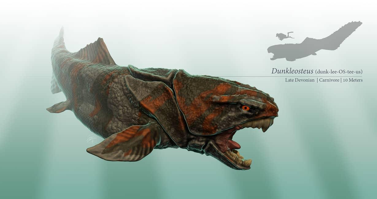 Dunkleosteus by Steven Davis