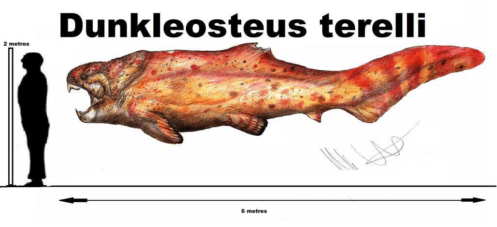 Dunkleosteus by Robinson Kunz