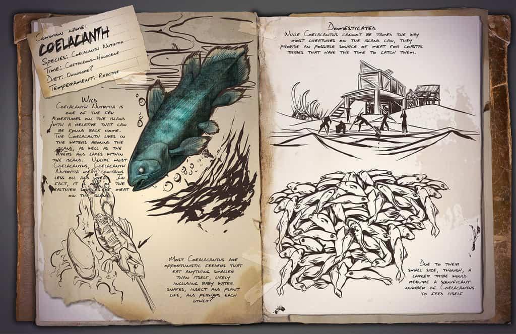 Coelacanth by Kevin