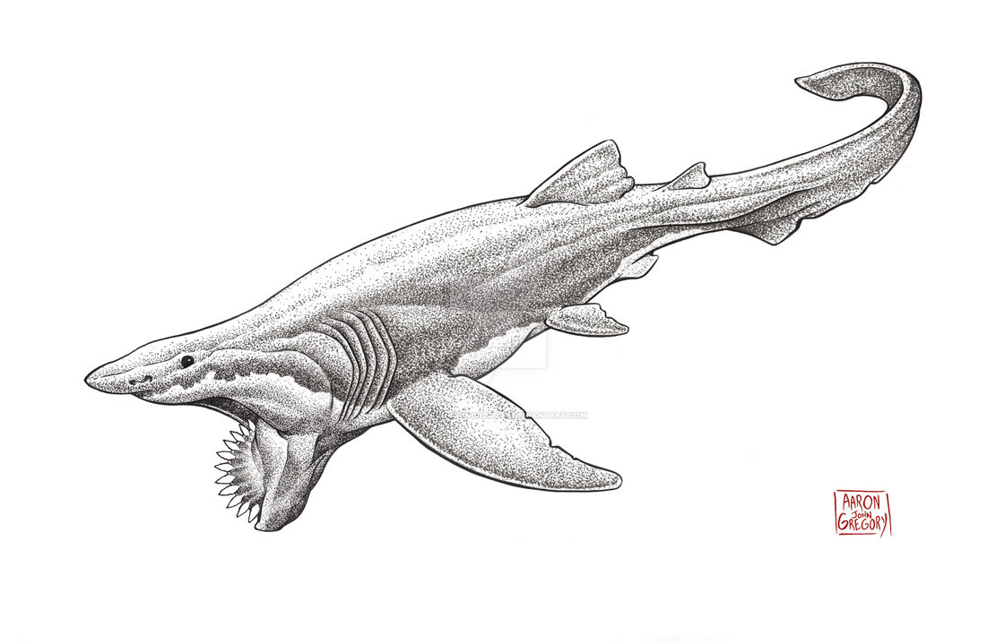 Helicoprion by Aaron John Gregory
