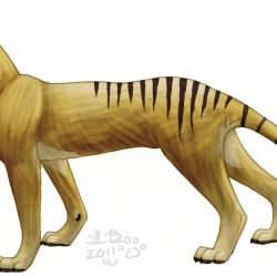 865_tasmanian tiger_griffin