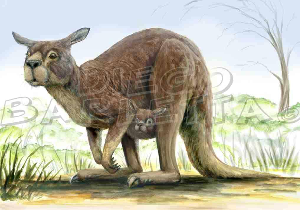 Procoptodon by Diego Barletta