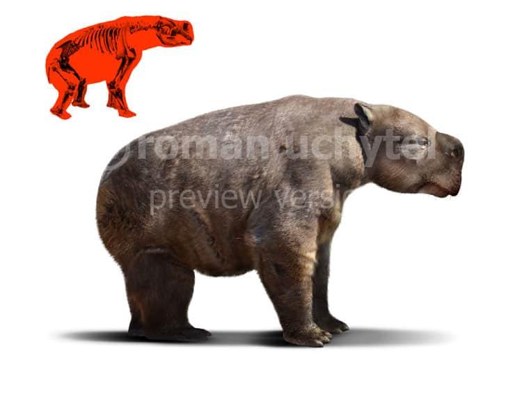 Diprotodon by Roman Uchytel