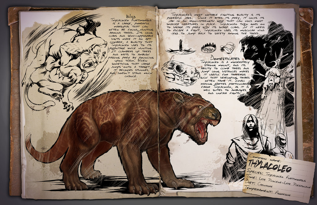 Thylacoleo by Kevin