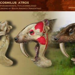 899_thylacosmilus_roman_yevseyev