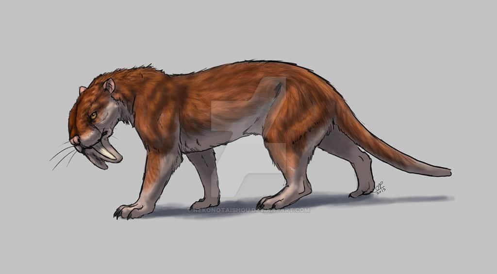 Thylacosmilus by Nekno