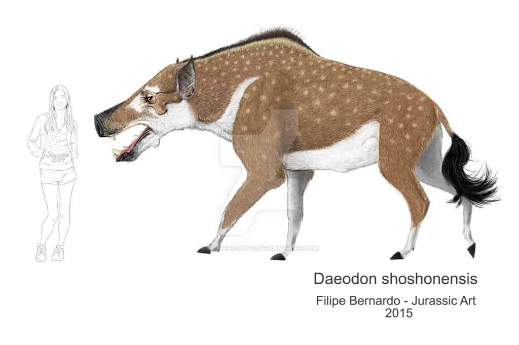 Daeodon by Filipe Bernardo