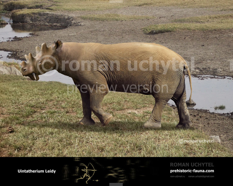 Uintatherium by Roman Uchytel