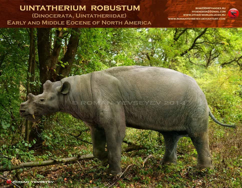 Uintatherium by Roman Yevseyev