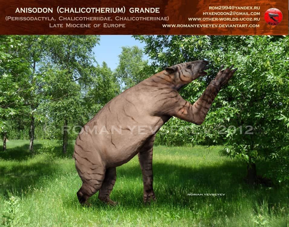 Chalicotherium by Roman Yevseyev