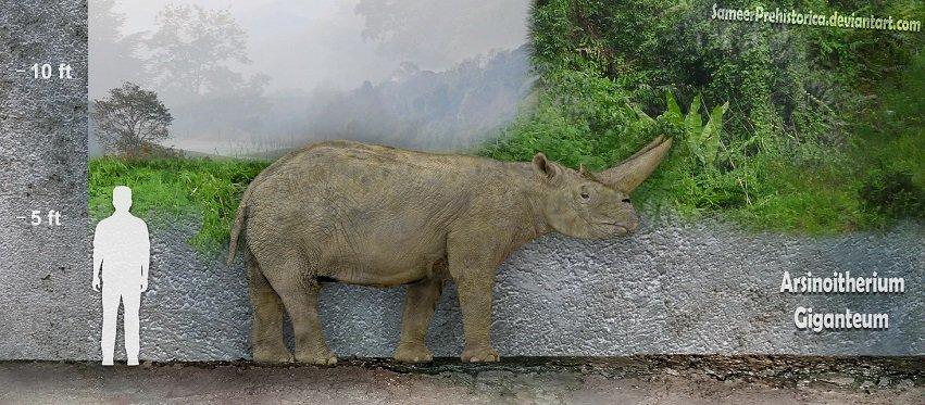 Arsinoitherium by SameerPrehistorica
