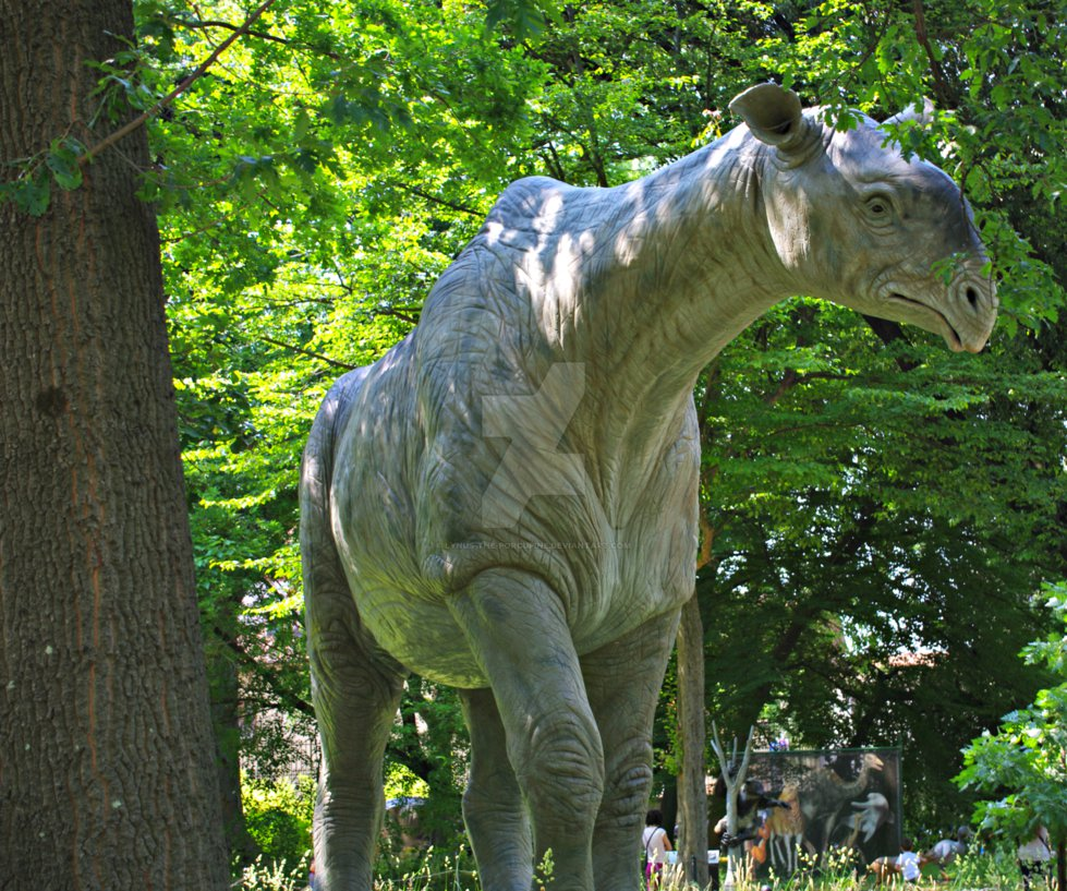 Indricotherium by Lynus