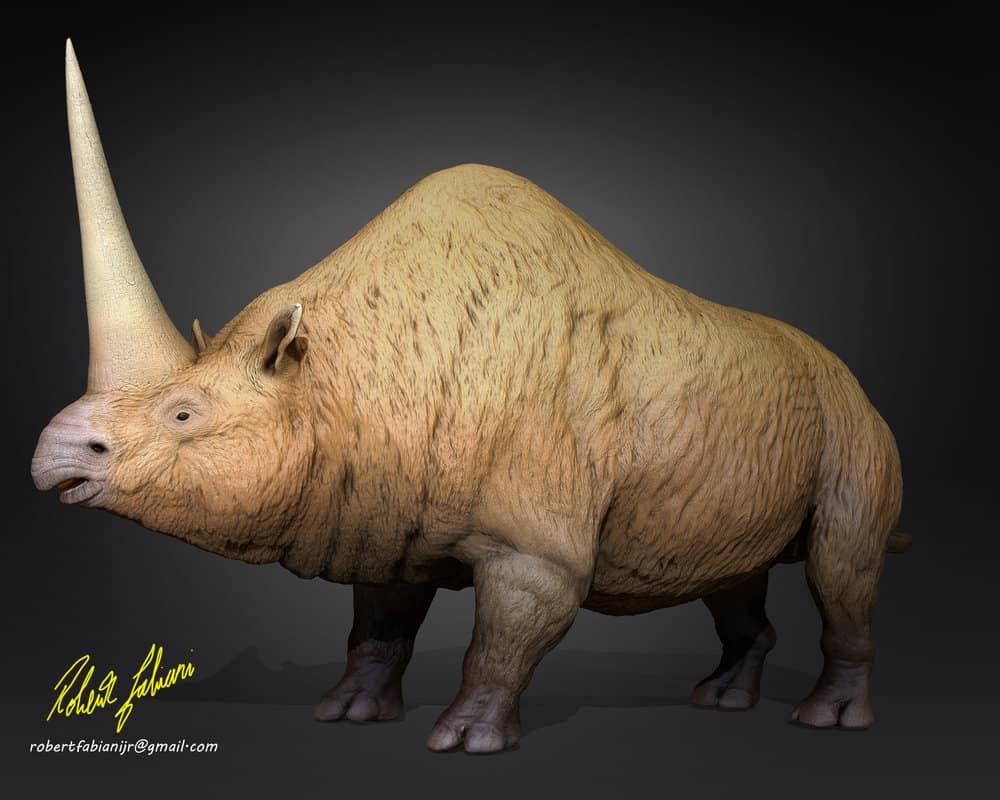Elasmotherium by Robertasaurus Fabiani
