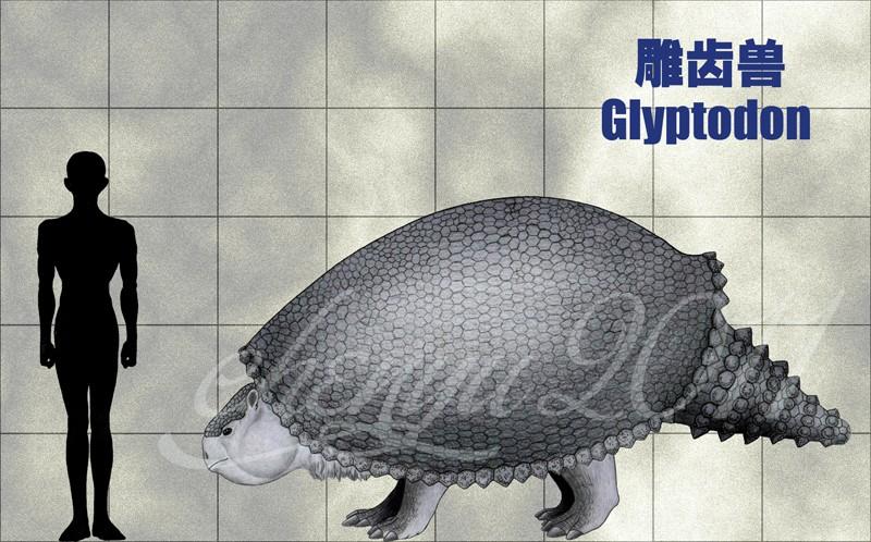 Glyptodon by Chen Yu