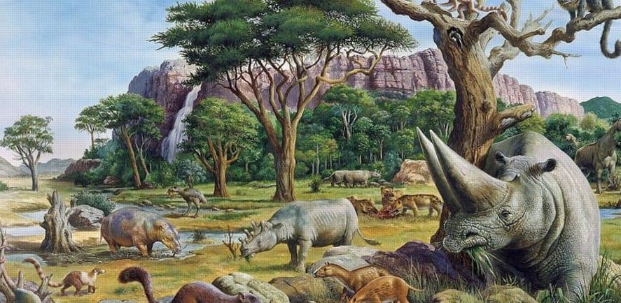 The Cenozoic Era - Fac...
