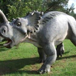 1656_centrosaurus_slythir
