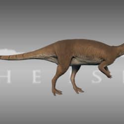 1661_dryosaurus_levia