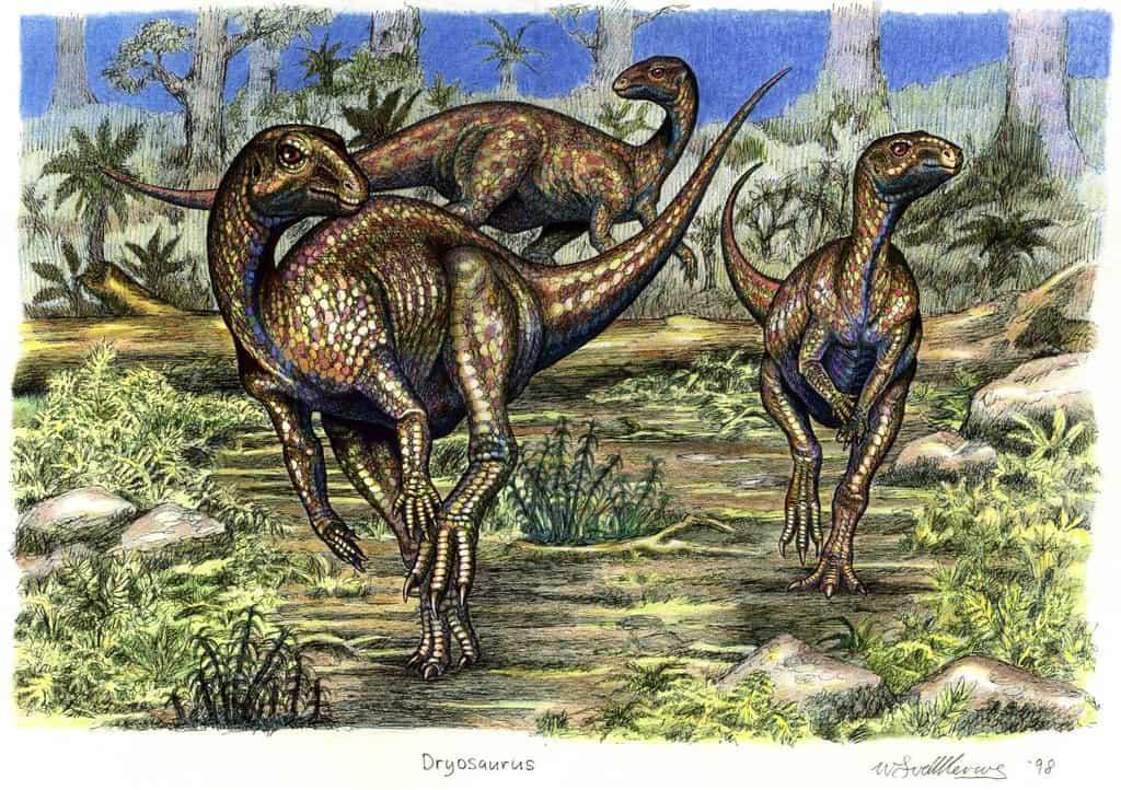 Dryosaurus by Willem van der Merwe