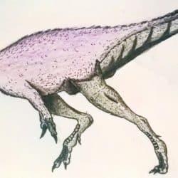 1669_gasosaurus_acpre