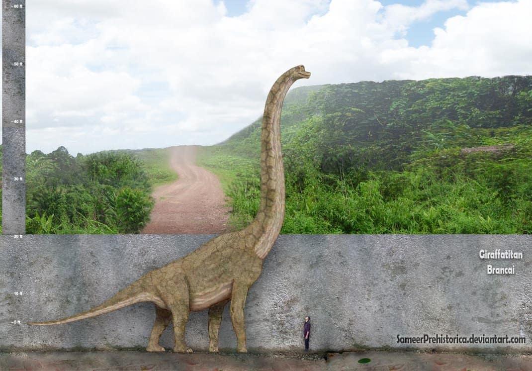 Giraffatitan by SameerPrehistorica