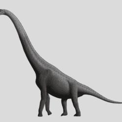 1678_giraffatitan_stephen_o'connor