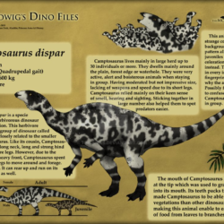 1687_camptosaurus_waranont_wiwaha