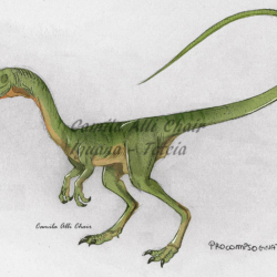 1690_procompsognathus_camila_alli_chair