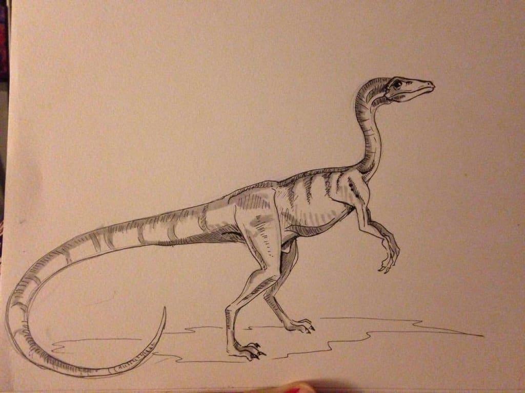 Procompsognathus by Cait Mac