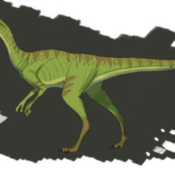 1693_procompsognathus_ralph_bishop