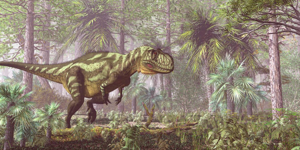 Yangchuanosaurus by Yuri Anisimov