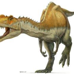 1697_yangchuanosaurus_paul_heaston