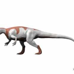 1700_yangchuanosaurus_nobu_tamura