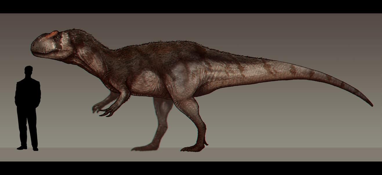 Yangchuanosaurus by Paleocolour