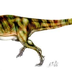 1704_yangchuanosaurus_sergio_perez