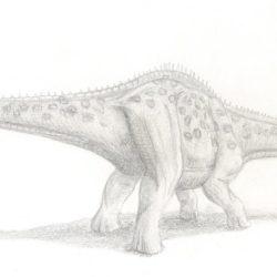 1725_shunosaurus_martin_colombo