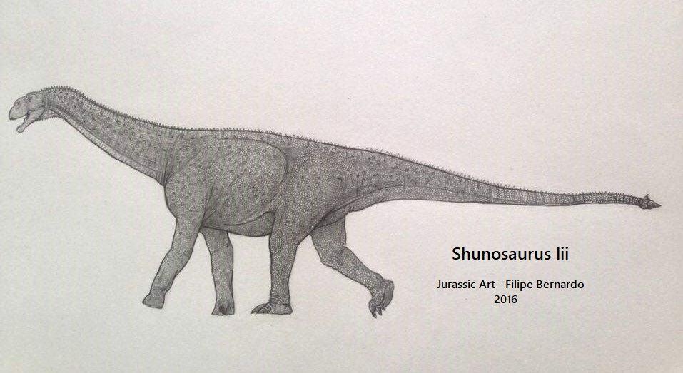 Shunosaurus by Filipe Bernardo