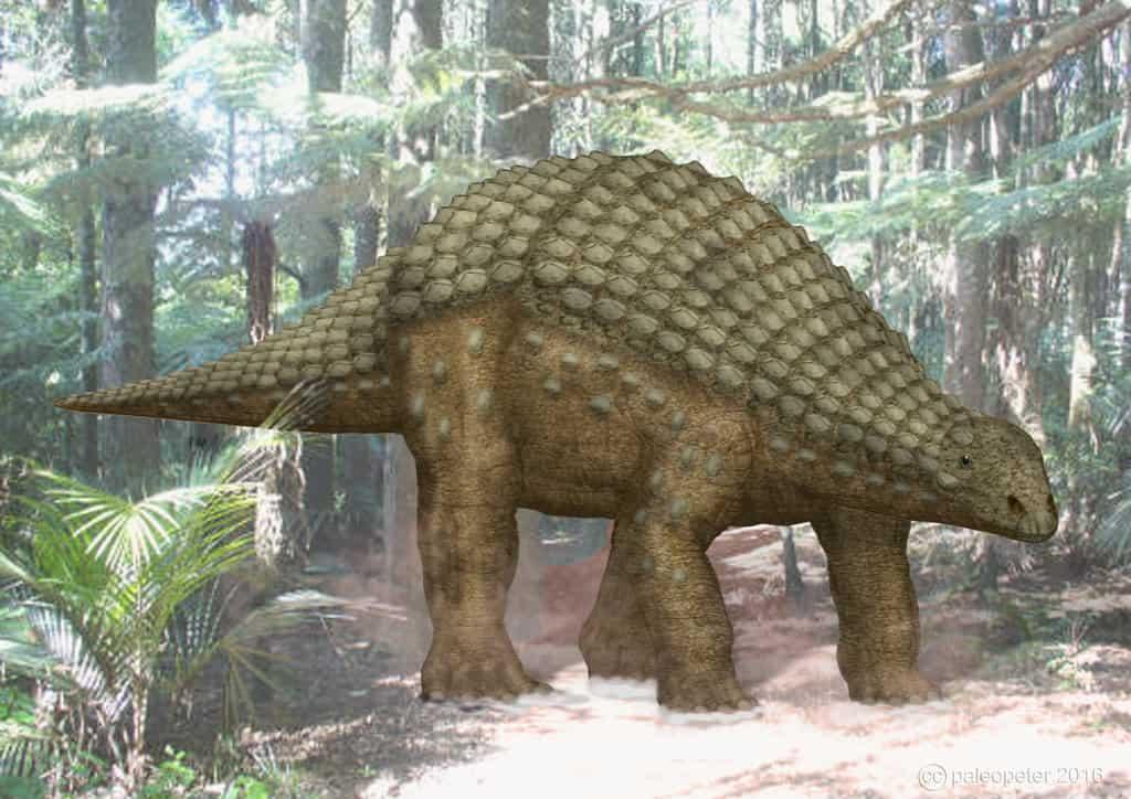 Nodosaurus by Peter Montgomery