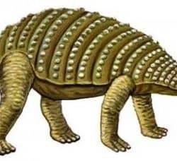 1730_nodosaurus