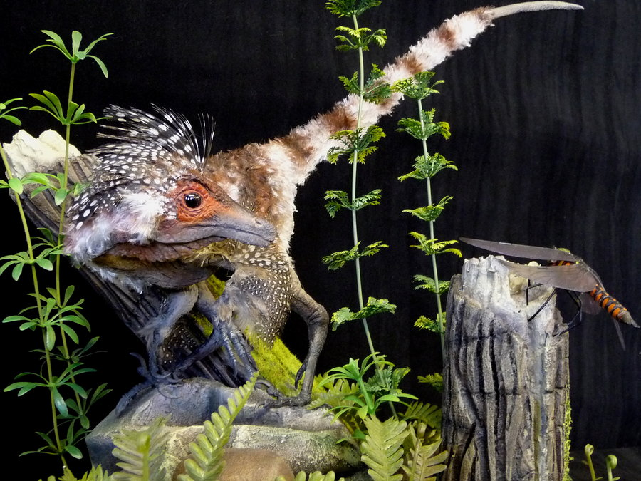 Sinosauropteryx by Martin Garratt